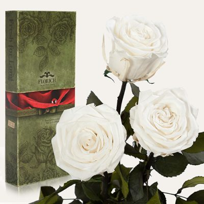 Три Розы долгосвежие WHITE DIAMOND